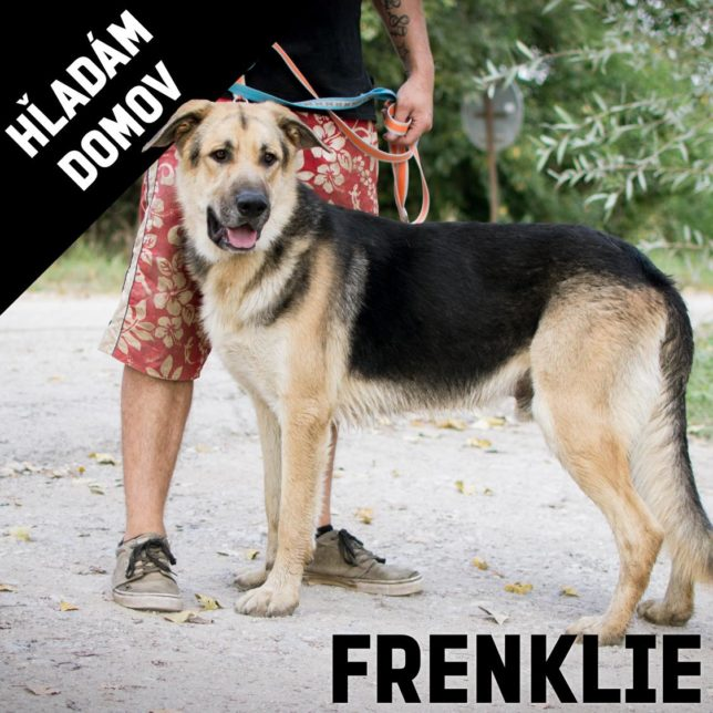 FRENKLIE